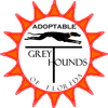 "ADOPTABLE ""GREYTHOUNDS"" OF FLORIDA"